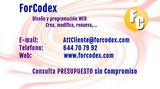 Programador informático páginas web - foto