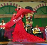 Flamenco - foto