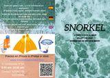 Realizamos folletos, web, redes sociales - foto