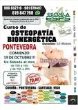 CURSO OSTEOPATIA ENERGETICA ESPS - foto