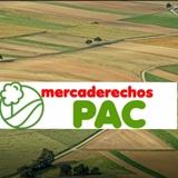VENTA DE DERECHOS PAC REGIÓN 8. 3 - foto