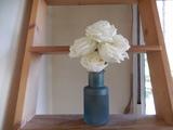 oficial florista - foto