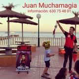 la magia de Alicante y elche - foto