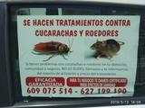 tratamiento contra cucarachas y roedores - foto