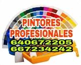 Pintores Profesionales Economicos - foto