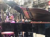 Técnico - Afinador-Restaurador de Pianos - foto