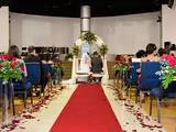 alquilamos alfombra para tu boda - foto