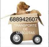 TRANSPORTE DE MASCOTAS(SOMOS EMPRESA) - foto