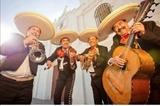 Mariachis divertidos - foto