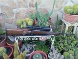 Rifle Cerrojo Mauser M12 - foto