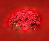 Ramo de rosas - foto