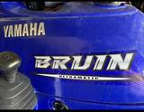YAMAHA - BRUIN 350  4X2 - foto