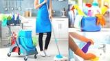 servicio de limpieza y mantenimiento - foto