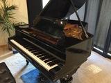 Afinador de pianos Álava - foto