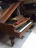 Afinadora de pianos en Compostela - foto