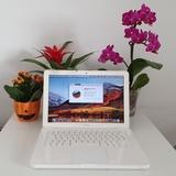 Apple MacBook 7,1 A1342 CD 13 Med 2010 - foto