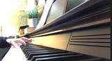 Piano eléctrico Casio Privia Px-760 - foto