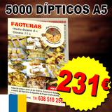 5000 dipticos folletos a5 canarias - foto