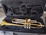trompeta player - foto