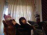 steiff marionetas - foto