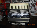acordeon stella - foto