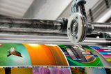 ¡en alicante somos imprenta! diseÑo web - foto