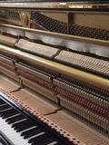 Restauró, Afinadora de Pianos - foto