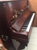 Afinadora de Pianos - foto
