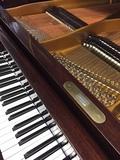 afinadora de pianos Logroño - foto