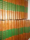 LOTE 50 LIBROS ANTOLOGÍA LITERARIA - foto