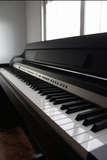 Piano elÉctrico profesional sonic dp-101 - foto