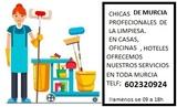 limpieza-pintura- transporte...Murcia - foto