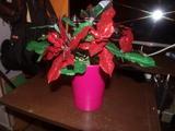 Flor de pascua artesanal venta - foto