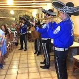 Mariachi Cenas de Empresas - foto