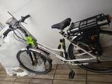 bicicleta elettrica - foto