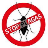 Protege tu hogar de plagas - foto