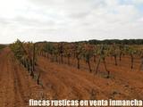 FINCA EN VENTA GANADERA - foto