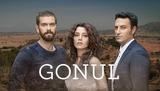 Gonul telenovela  dvd turca y muchas mas - foto