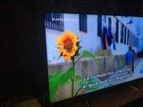 Panasonic TX-50GX800E 50 NUEVO SMART - foto