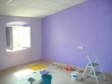 +++ pintor paredes y lacados - foto