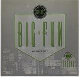 Inner City Big Fun Maxi Ale - foto