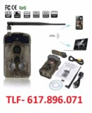 Ism ltl acorn camara  led invisible - foto