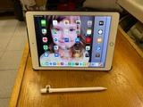 iPad Pro 128 gb Wifi+Celular - foto