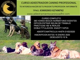 CURSO ADIESTRADOR CANINO PROFESIONAL - foto