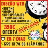 WEB PARA EMPRESAS 350 TODO INCLUIDO - foto