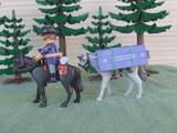 Playmobil nordista portando rifles - foto