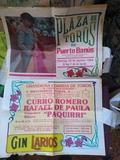 carteles taurinos - foto