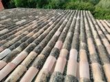 repaso de tejas rotas en tejados - foto