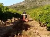 tractor con subsolador y rotobator - foto