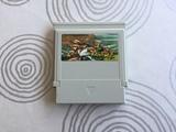 Street Fighter II Nintendo Nes - foto
